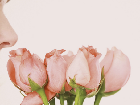 Duftmagie: Magst Du Dein Zuhause gerne riechen?