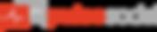 Logo pulso social.png