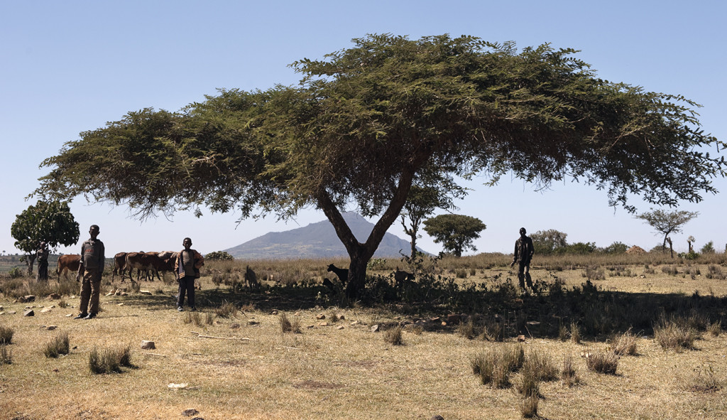 11. Ethiopie 144-145.jpg