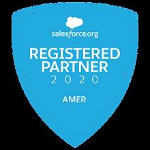 Registered Nonprofit Partner 2020.png