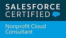 Salesforce Nonprofit Cloud Consultant Ba