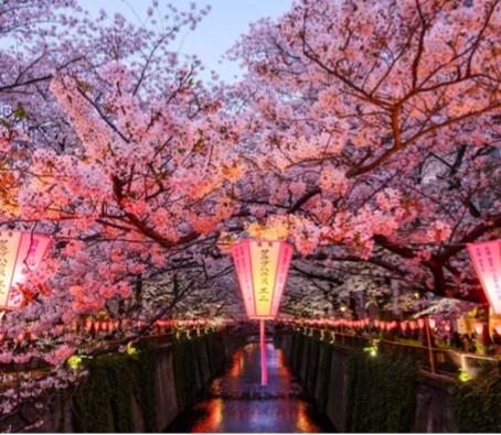 Spring Festivals Around The World