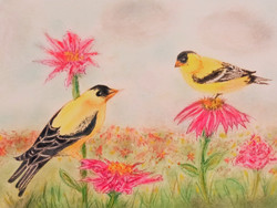 Goldfinch Chatter