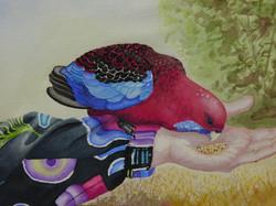 A Bird in Hand (Lorakeet)