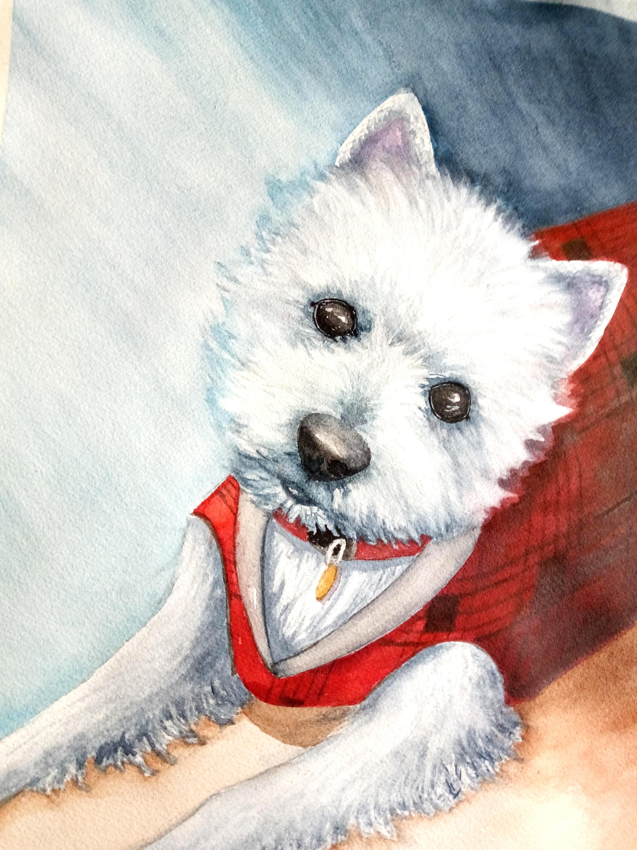 West Highland Puppy