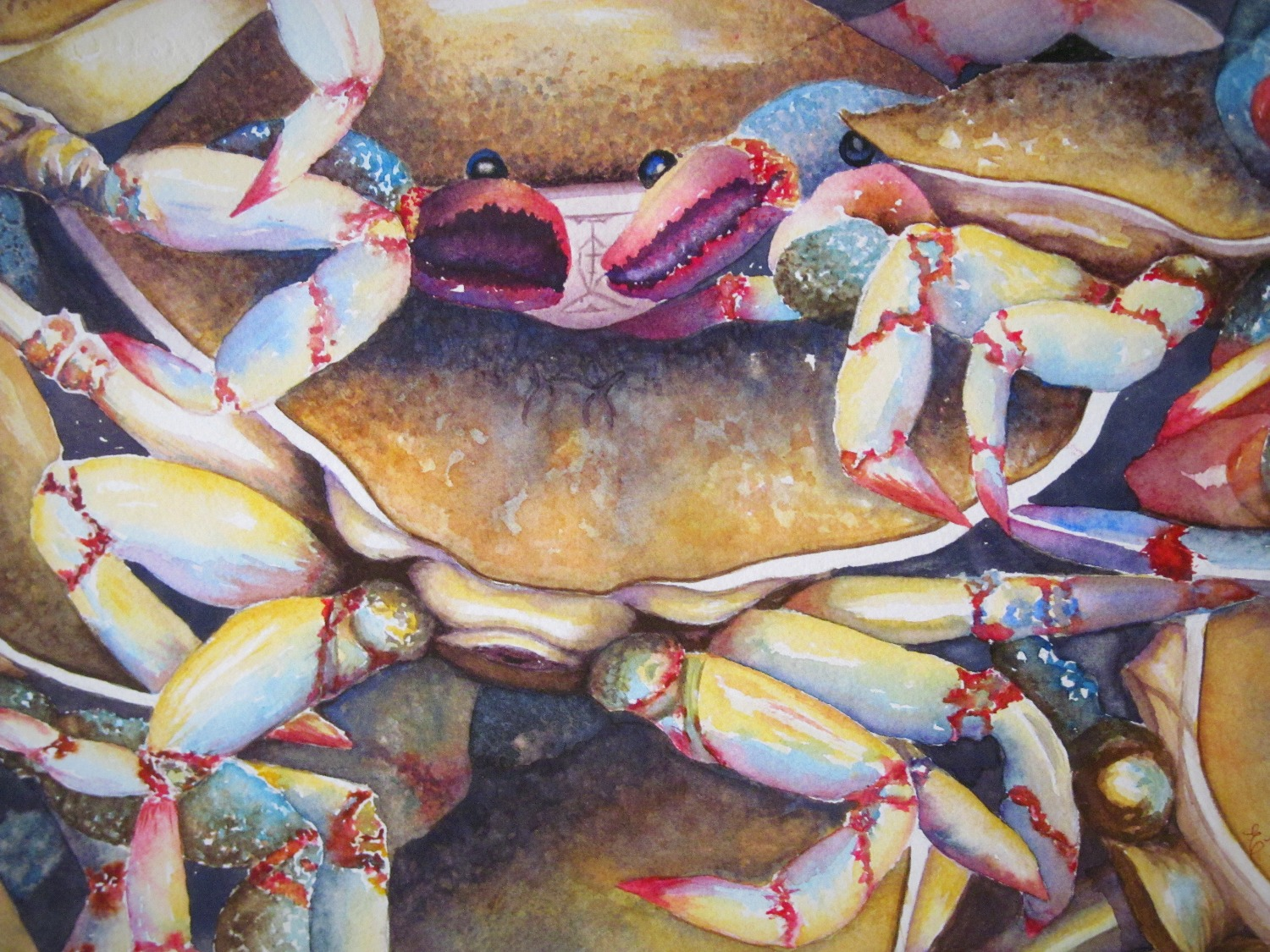Crowded Crabs