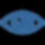 noun_Eye_1206483_326699.png