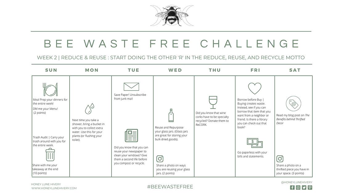 Honey Lune Hivery Week 2 Bee Waste Free Challenge