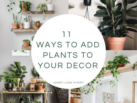 11 Ways to Add Plants to your Decor