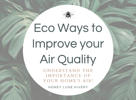 Eco ways to Improve your Air Quality