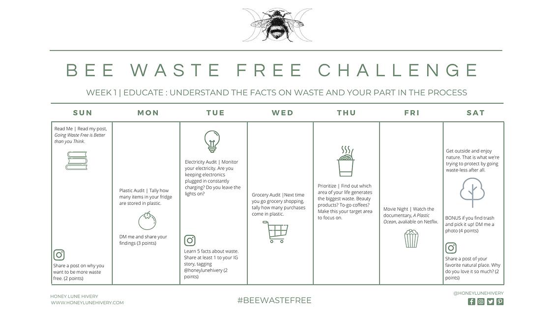 Honey Lune Hivery Week 1 Bee Waste Free Challenge