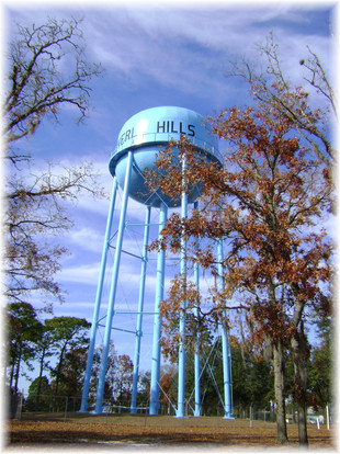 Beverly Hills Water Tower