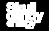 sk logo2Artboard 1.png