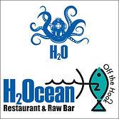 h20 logo.jpg