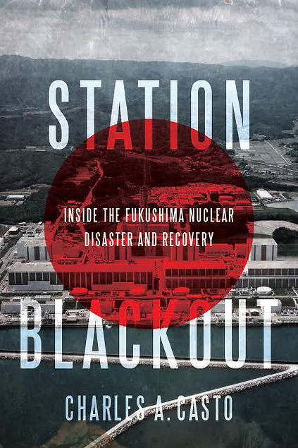 Station Blackout option 3.jpg