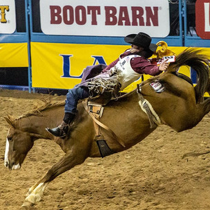 National Finals Rodeo Highlights