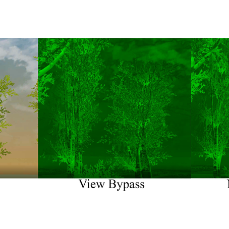 Assessing Image Quality Impact of View Bypass in Cloud Rendering