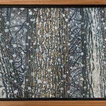 Five Cottonwoods