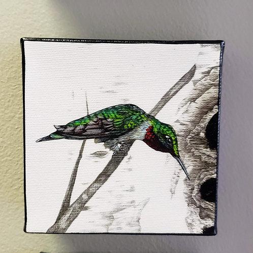"Hummingbird print on canvas by Kari Jameson 4x4""  1 3/4"" deep"