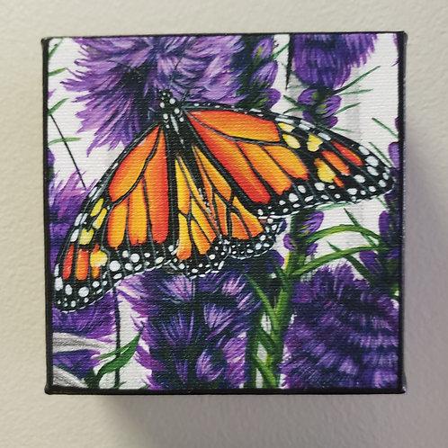 "Monarch print on canvas by Kari Jameson, 4x4"" on 1 1/2"" deep frame"