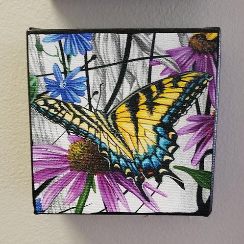 """Swallowtail Butterfly, 4x4"""" 1 1/2"""" deep"""