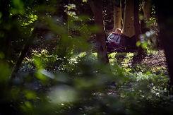 Forest Bathing September 2020-107.jpg