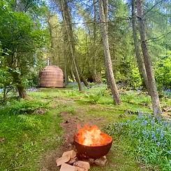 Woodland Sauna.JPG