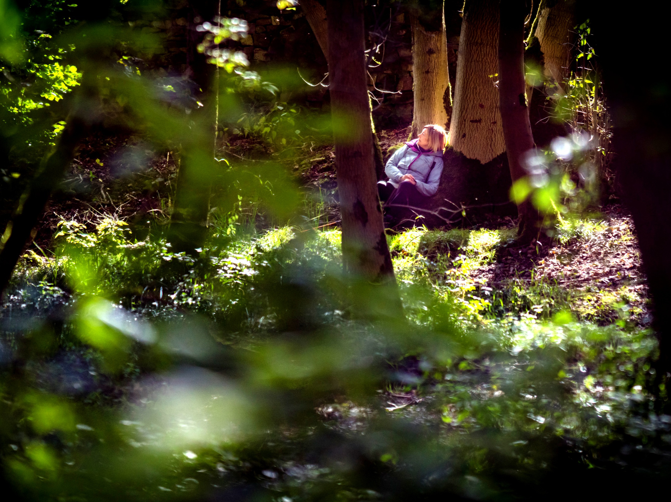 One-to-One Forest Bathing