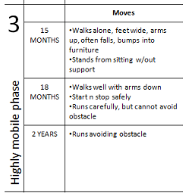Highly mobile phase 3 - Moves: 15 months - walks alone, feetwide, arms up, often falls, bumps into furniture, stands from sitting w/out support: 18 months - walks well with arms down, start n stop safely, runs carefully, but cannot avoid obstacle, 2 years runs avoiding obstaclest