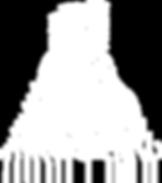 logo white website.png