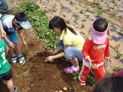 South Korea Outdoor Activities for Family Tour, tagytravelkorea.com