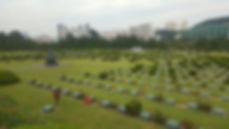 Korea private tour-Tagytravelkorea, UN Memorial Cemetery
