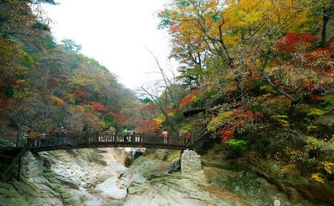 Korea private tour-Tagytravelkorea, Jujeongol Valley and Osak spring