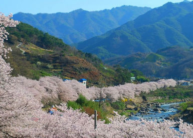 Seomjingang River, Ride railbike, 6days South Korea Tours