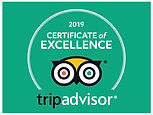 Tagy Travel korea - Tripadvisor