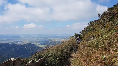 Korea Hiking Travel Agency-Tagytravelkorea, Mt. Wolchulsan National Park : Silver grass field
