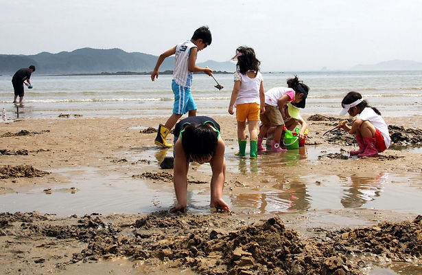 Kids Mud Field experience-South Korea