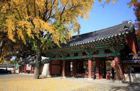 Gyeonggijeon shrine-Fall foligae tour from Seoul
