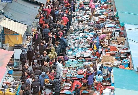 tagytravelkorea.com-JagalchiFish Market