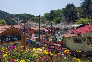 Pocheon Herb Island -Tagy Travel Korea