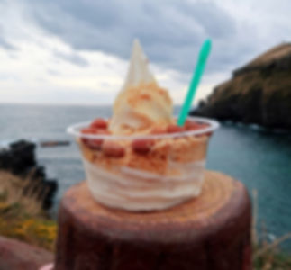 Udo Island Tour-peanuts ice cream