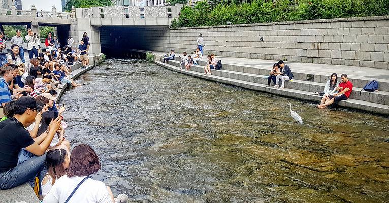 Korea private tour-Tagytravelkorea, Seoul full day sightseeing Tour