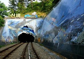 Korea private tour-Tagytravelkorea, Cave  Exploring & Ocean Rail Bike Tour : Ocean Rail Bike
