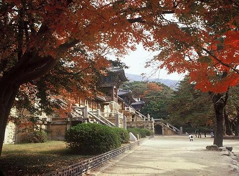 Korea private tour, Gyeonju Tour, Tagy Travel Korea