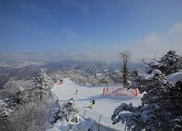 YongpyoungSky Resort - Tagy Travel Korea