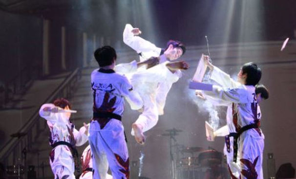 Korea private tour-Tagytravelkorea,authentic taekwondo demo