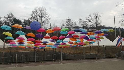Korea private tour-Tagytravelkorea, Gangchon Rail Bike Park