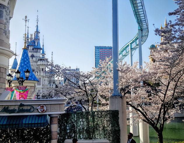 Korea private tour-Tagytravelkorea, Lotte World