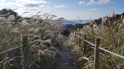 Tagytravelkorea-Mt.Wolchulsan National Park Korea Hiking tour