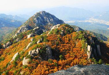Korea hiking tour-Tagy Travel Korea-Seol city tour